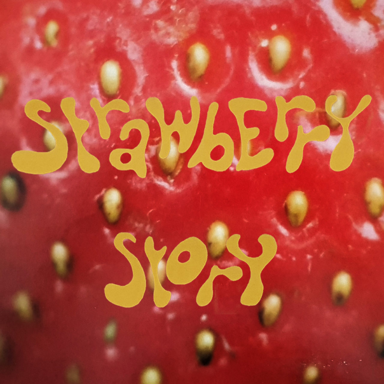 Strawberry Story music vide